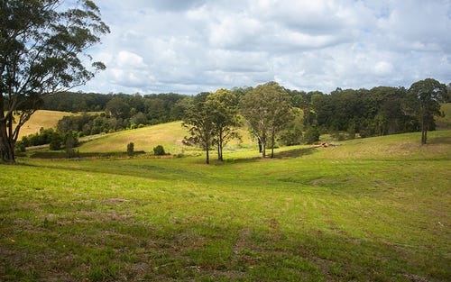 Lot 573 Irvines Road, Newee Creek NSW 2447