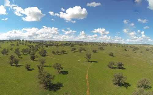 Lot 5 Cranky Rock Road, Canowindra NSW 2804