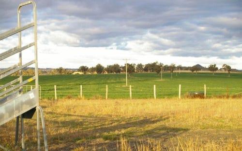. Liston, Warialda NSW 2402