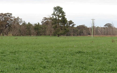 Lot 1 Old Cobram Rd, Berrigan NSW 2712