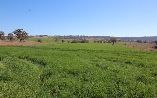 Address available on request, Warialda NSW 2402