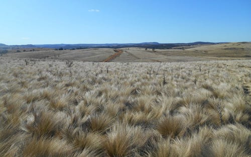 Lot 1 Brayton Road, Big Hill via Marulan, Marulan NSW 2579