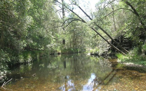 Lot 6 Dungay Creek Rd, Wittitrin NSW 2440