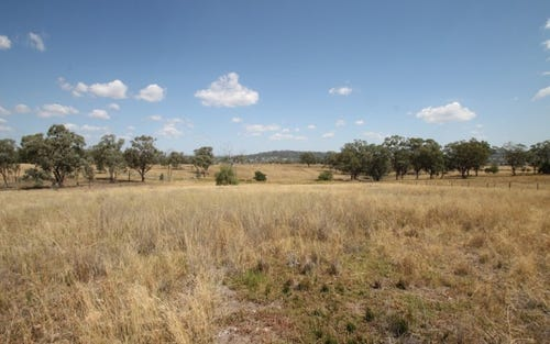 281 Callaghans Lane, Quirindi NSW 2343