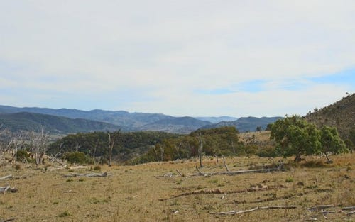 1759a Mount Mackenzie Road, Tenterfield NSW 2372
