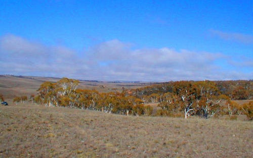 Dry Plains Rd, Cooma NSW 2630
