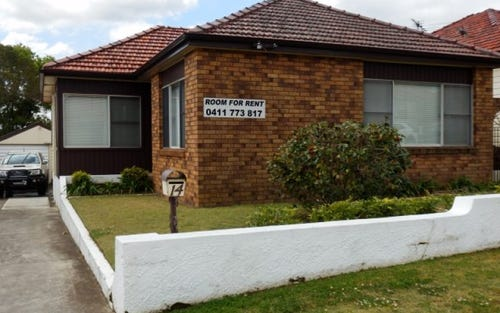 14 Catherine Street, Waratah NSW