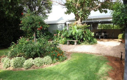 442 Reserve Road, Dareton NSW 2717