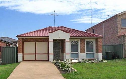 6 Chestnut Crescent, Prestons NSW