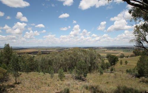 53 Ray Carter Drive, Quirindi NSW 2343