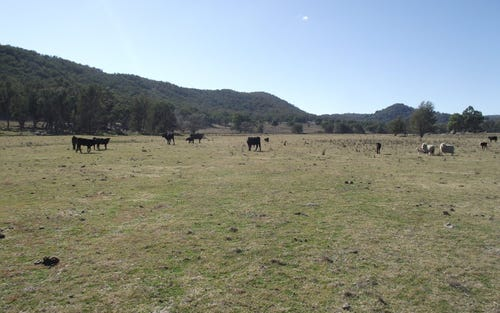 . Thunderbolts Way, Uralla NSW 2358