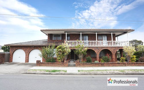 161A Canley Vale Rd, Canley Heights NSW 2166