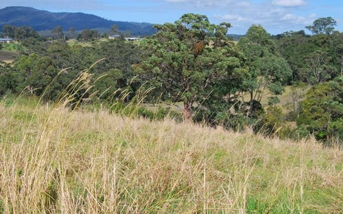Lot 7 Strawberry Road, Warrell Creek NSW 2447