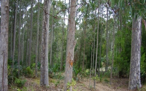 Lot 50, Tathra-Bermagui Road, Barragga Bay NSW 2546