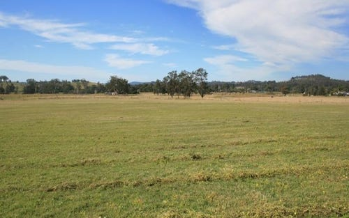 Lot 21, 1397 Dungog Road, Dungog NSW 2420