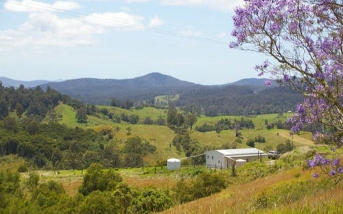 1,2,3, 802 Bakers Creek Rd, Taylors Arm NSW 2447