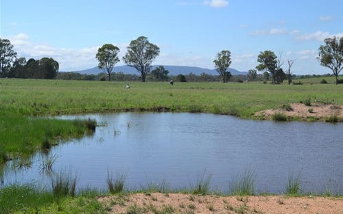 Lot 3/579 Cope Road, Gulgong NSW 2852