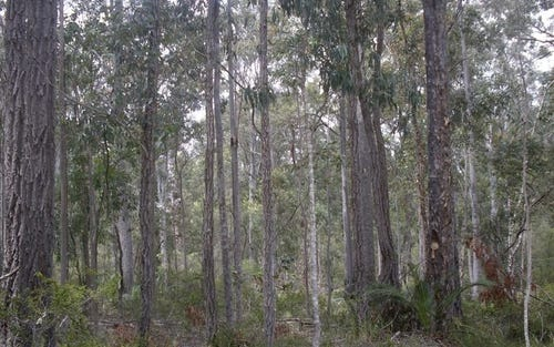 Lot 8 Bushland Road, Moruya NSW 2537