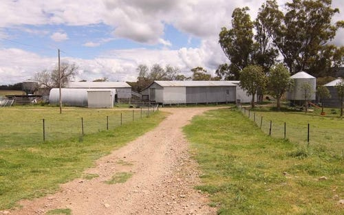 1606 Rocky Creek Road, Emmaville NSW 2371