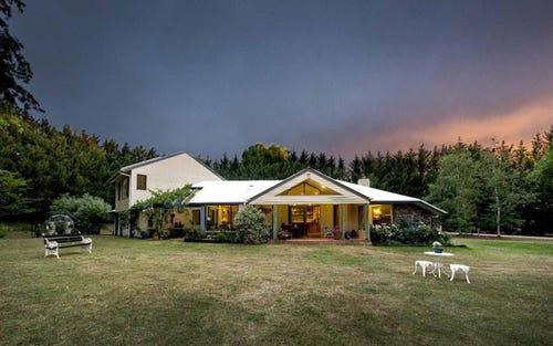 37 Hunter, Glen Innes NSW 2370