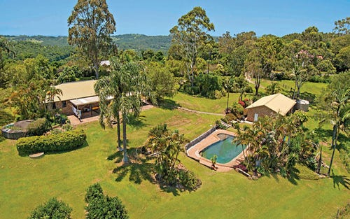 461 Repentance Creek Road, Federal NSW 2480