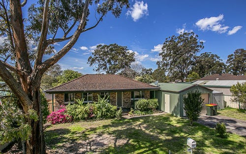 4 Birch Close, Medowie NSW 2318