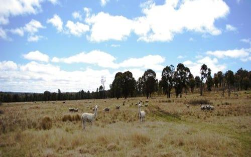 530 Moredun Dams Road, Tenterden, Guyra NSW 2365