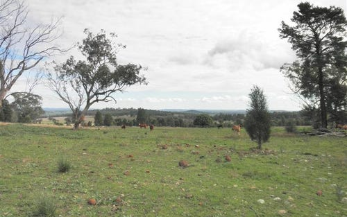 Lot 20 Whiteleys Lane, Geurie, Dubbo NSW 2830