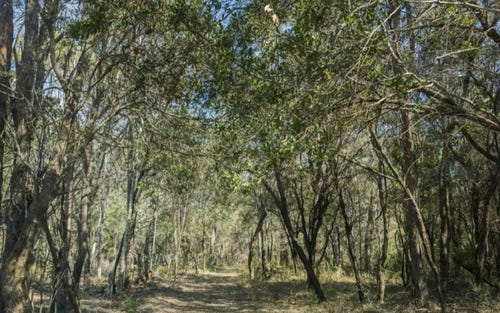 Lot 92 Sandy Swamp Road, Coutts Crossing NSW 2460
