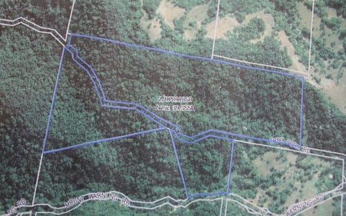 Lot 2 Tree Fern Road, Mount Warning NSW 2484