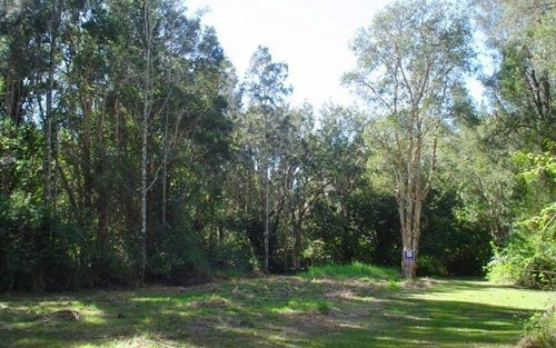 LotS/55 Peace Parade, Pindimar NSW 2324