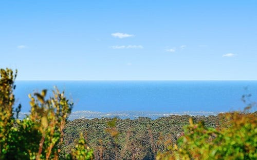 50 Vandenbergh Road, Robertson NSW 2577
