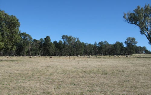 Lot 2 Eurow Valley, Parkes NSW 2870