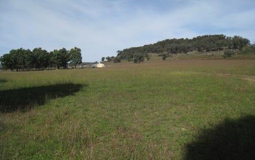 396 Kains Flat Road, Mudgee NSW 2850