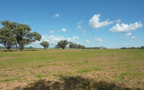 Lot 117 Euchareena Road, Molong NSW 2866