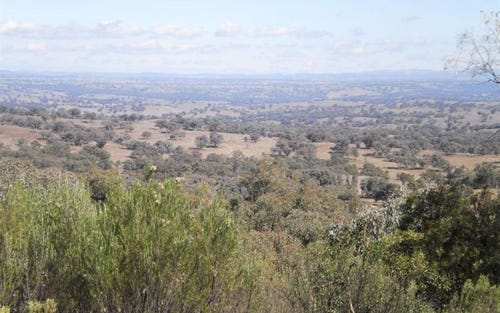 * Frisco, Barraba NSW 2347