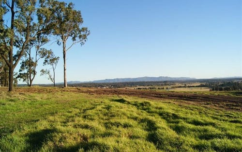 Lot 43 Pyrus Avenue, Branxton NSW 2335