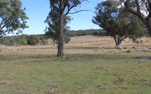 Lot 358 Torrington Rd, Stannum NSW 2371