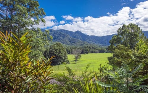 174 Promised Land Road, Bellingen NSW 2454