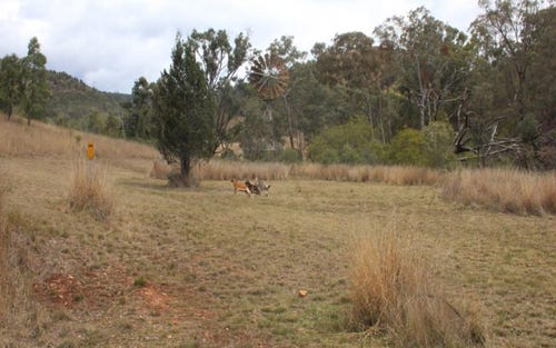 Lot 74 Mole River Road, Bryans Gap NSW 2372