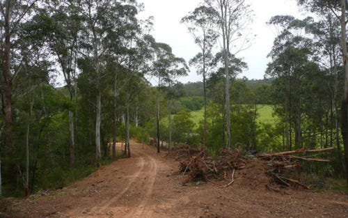 Lot 24 River Road, Brooman NSW 2538