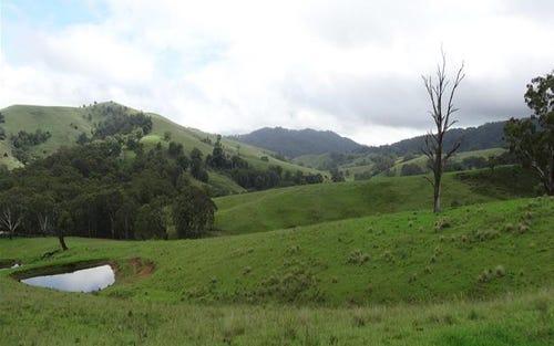 360 Bowmans Creek Road, Singleton NSW 2330
