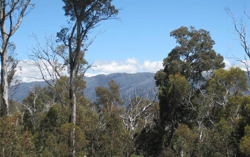 Lot 139 A&B Wollondibby Road, Crackenback NSW 2627