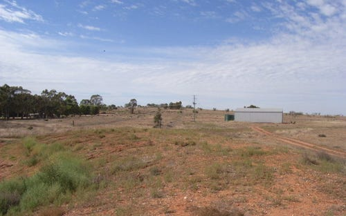 Lot 1 Back Trundle Road, Parkes NSW 2870