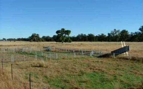 552 Ulungra Springs Rd, Gilgandra NSW 2827