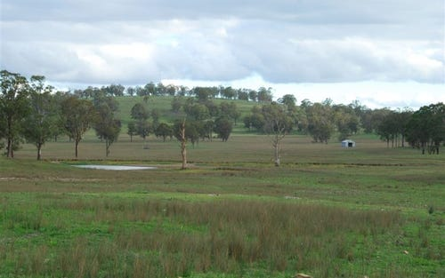 381 Gills Road, Walcha NSW 2354