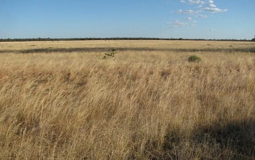 Bushells, Stumpy Lane Rd, Narrabri NSW 2390