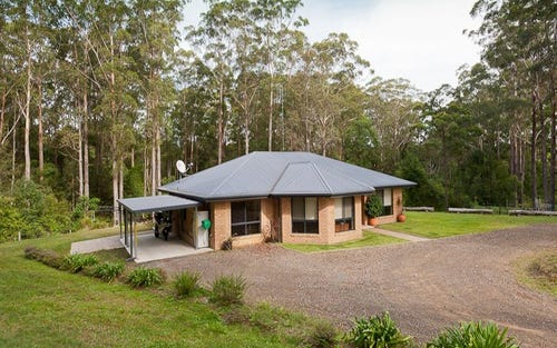 11 Rainforest Drive, Mitchells Island NSW 2430