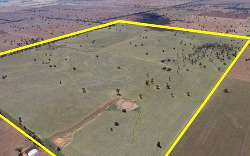 Sylvanus/1 Faithfull Rd, Boree Creek NSW 2652