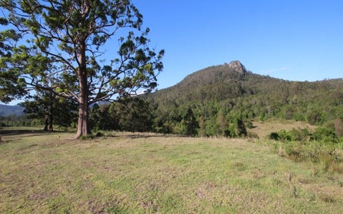 Lot 212 McGilvray Road, Killabakh NSW 2429